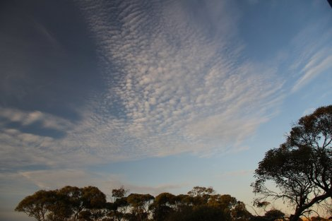 Big skies and Gum Trees.  South Australia.